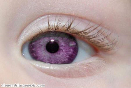 Alexandrias Genesis Pictures Violet Eyes Real or fake
